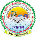 Chhattisgarh Professional Examination Board